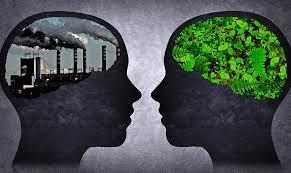 مصرف گرایی و محیط زیسن