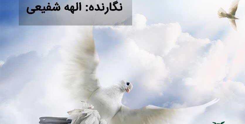 پرندگان در قرآن