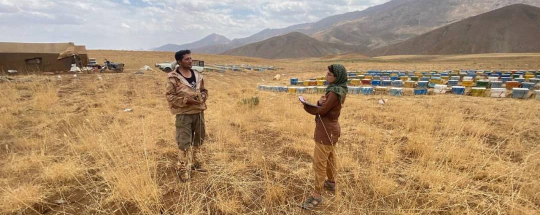 پروژه کنترل تعارض کندوداران و پرندگان زنبورخوار