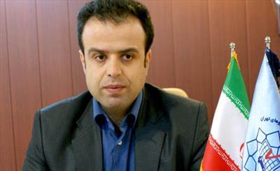 دکتر صدرالدین علیپور