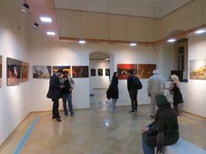 نمایشگاه عکس حیات وحش