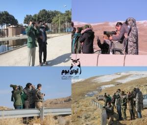 سرشماری پرندگان آبزی استان اصفهان