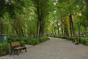 پارک شهری